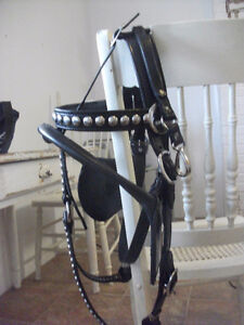 leather work/pulling bridles