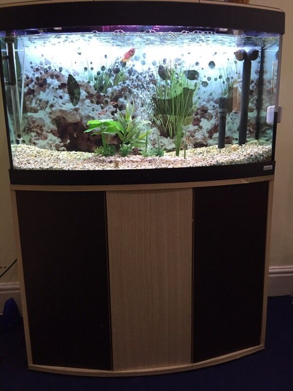 Fluval fish tank 180l with fluval 306 external filter for Fish tank filter not working
