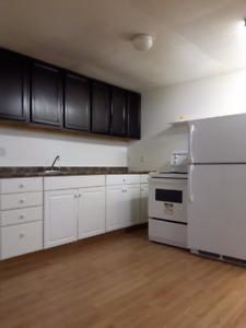 2 Bedroom Basement in Deer Ridge