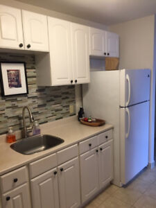 Beautiful 1 Bedroom in Central Location