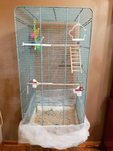 2 Perruches avec cage à vendre