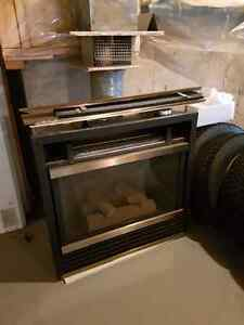 Insta-Flame  Propane Fireplace  Insert