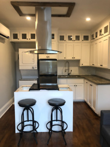 New, Fully Furnished 1 BDRM Downtown. Heat, Lights & Wifi Incl.