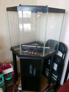 45 gallon corner aquarium