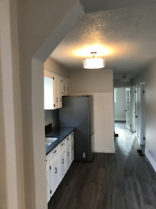 NEWLY RENOVATED 3 BEDROOM, Hamilton Downtown - Utilities Incl.