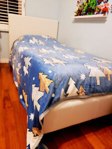 The Brick's Chase Twin Bed with Box Spring