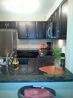 1 BED ROOM CONDO FOR RENT IN SADDLETOWNE CIRCLE
