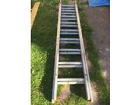 Task master double aluminium ladders