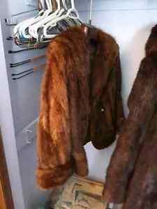 Real Beaver Fur Coats Regina Regina Area image 5