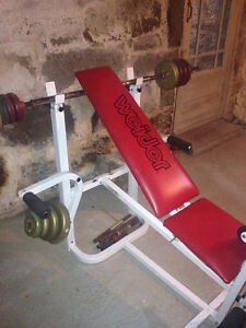 Excellent Multi-Function Weight Bench  $200.00 firm
