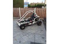 Murray off road buggy/gokart
