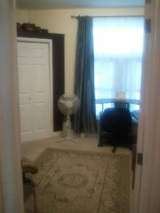 Treatment Rooms Available to Rent Per Diem or Monthly! London Ontario image 10