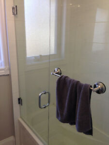 Glass door and panel for shower