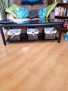 Glass and metal table (TV stand)