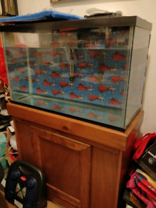 30 Gallon Fish Tank With LED Lighting & Stand