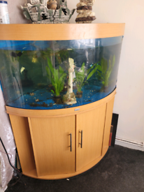 Juwel trigon 190 corner tank with fluval 206 external filter & lights