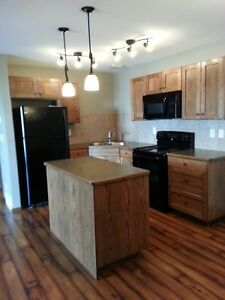 Beautiful Laminate! 2 Bed, 2 Levels, Laundry, Quiet, Well Kept