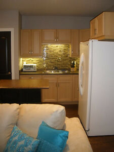 FOR RENT: AVAILABLE IMMEDIATELY EXECUTIVE STYLE basement suite
