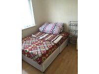 Double room to rent for vegetarian only