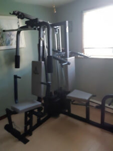 Home work out gym