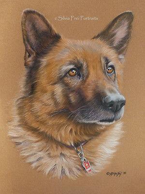 Tierportrait nach Foto A4 farbig Auftragsmalerei Porträt Tier Tierzeichnung