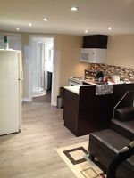 Beautiful basement apartment for Rent close to Champlain mall