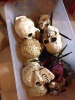 Box of halloween items!!