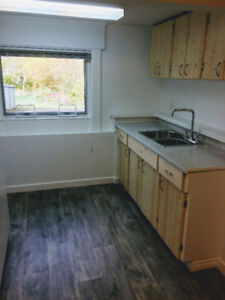 Basement bachelor suite for rent in desirable Cedar Hill area