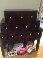 Wood cabinet CD Case (Holds over 200 CD's)