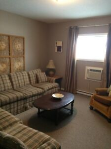 furnished 2 bedroom 2 bath room apartment suite for rent Dec 1s
