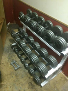 Pro Style dumbbell set. 1200 lbs+rack