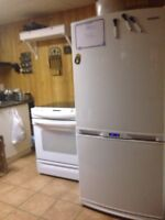 General Electric stove and Samsung fridge