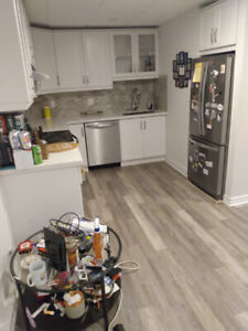 Beautiful 1 Bedroom Basement (Leslieville)