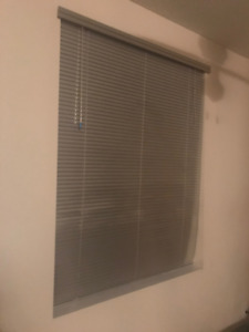Silver Window Blinds - Set of 2