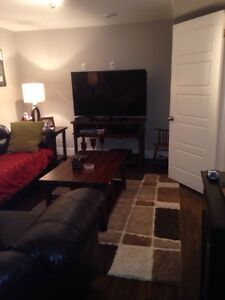 Beautiful 2 Apartment in Southlands St. John's Newfoundland image 7