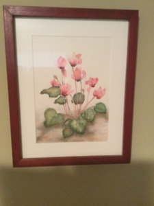 Cyclamen by Norma Gilmour