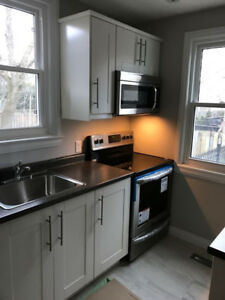 Beautiful 2 bedroom + Den available on hamilton west mountain.