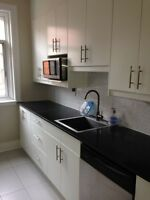 Immaculate fully renovated Victorian 4.5 apartment