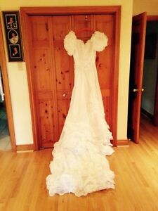 Wedding Dress and Veil     $50.00 *NEED GONE*