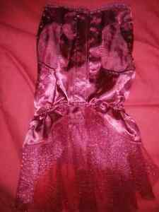 Cute small dress for dog Cambridge Kitchener Area image 3