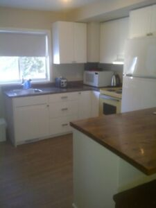 Cosy 2 Bdrm/1 Bath Deep River $1280/mon Incl.