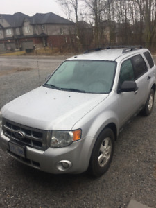 Ford Escape 2011 XLT No Accident URGENT