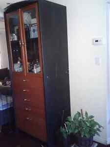 TWO MASSIVE IKEA SUFFLOR WALL UNITS-$180 for both OBO