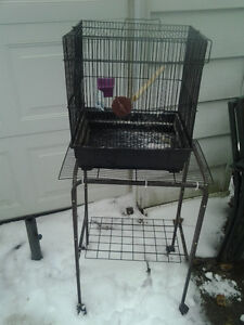 Bird cage and stand- Lovebird, budgie, finch size