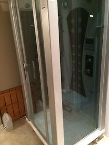 Steam Shower Strathcona County Edmonton Area image 1