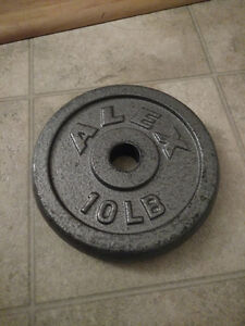 10 lbs weight plates