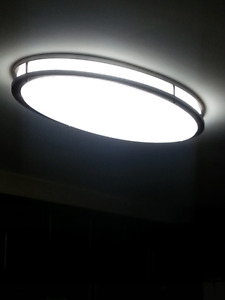 32 in LED oval  flush mount for kitchen (81,2 cm)