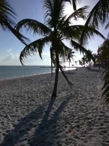 Florida Rental Wanted