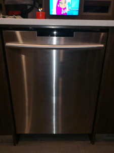 Dishwasher white and stainless steel