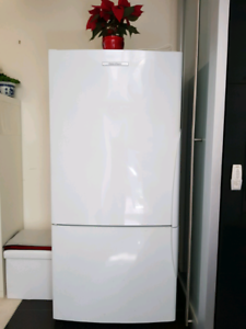 Reduced price fridge/Freezer Fisher & Paykel family size